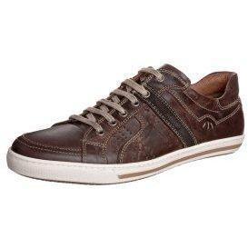 Pier One Sneaker darkbrown