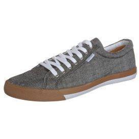 Pointer SEEKER IV Sneaker black chambray